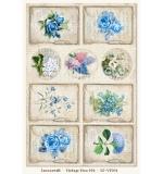 Gossamer Blue Vintage Time 06