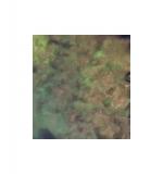 Lindy's Stamp Gang Moon Shadow Mist - Mystic Malachite