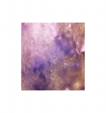 Lindy's Stamp Gang Moon Shadow Mist - Violaceous Violet