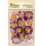 Briar Rose Canvas-Purple - Petaloo