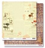 (SCB) В лесу - Справочник грибника