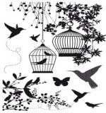 "Набор штампов ""Hummingbird"" (KC)"