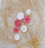 Набор цветов White and Colar dot