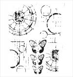Трафарет TCW 15х15 см Specimens