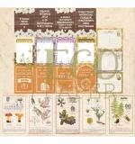 """Набор карточек """"Тайны леса"""" (Eco Paper)"""