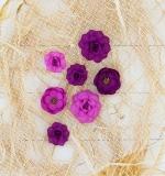 Набор цветов Fuchsia