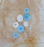 Набор цветов White and blue