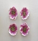 Цветы анемоны, нежно-сиреневые