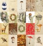 """Набор карточек """"Осенний лес"""" (Eco Paper)"""