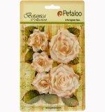 Garden Roses - Cream - Petaloo