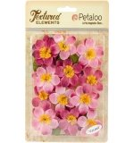 Briar Rose Canvas-Pink - Petaloo