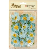 Briar Rose Canvas-Teal - Petaloo